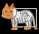 新メニュー「猫背矯正」